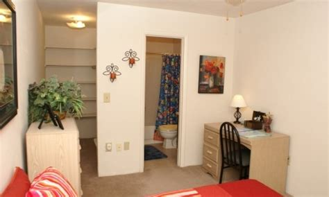 1 bedroom apartments in sunrise fl sunrise villa apartments in gainesville near uf and shands