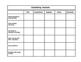 animal classification worksheet google search animals