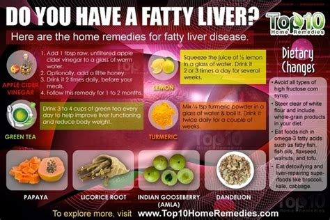 Liver Detox Wiki by How To Reduce Fatty Liver In A Hostel