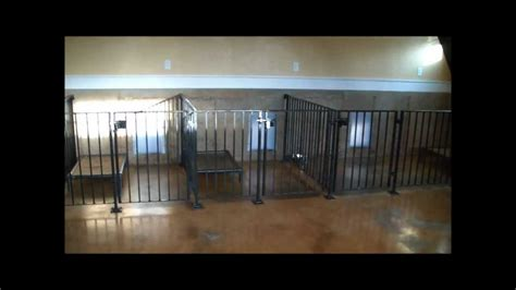 1000 images about dog kennel designs on pinterest dog indoor dog facility design tips and ideas to prevent pests