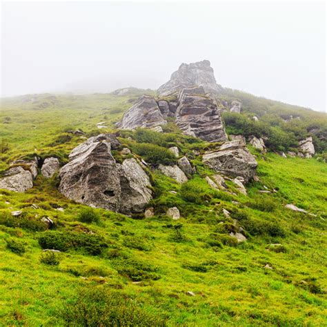 carpathian rock formation covered  moss stock photo