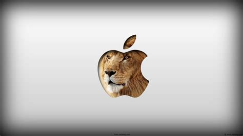 wallpaper for mac os x lion 55 new mac os x lion wallpapers in hd for free download