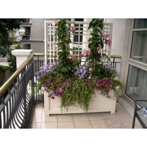 Balcony Container Gardening Ideas 1000 Images About Garden Balcony On