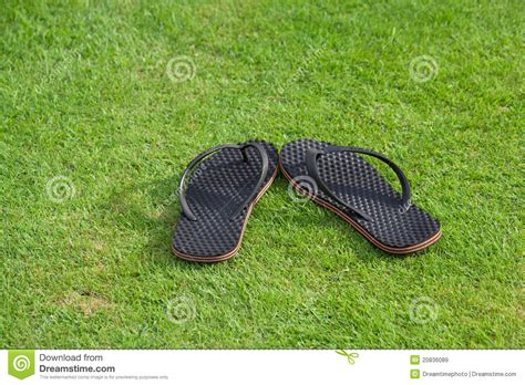 grass slippers slippers on grass royalty free stock images image 20836089