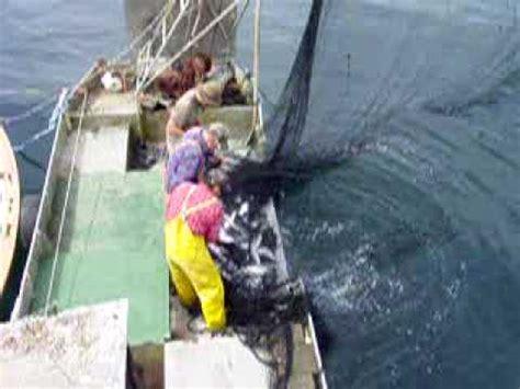 jet boat fishing   doovi