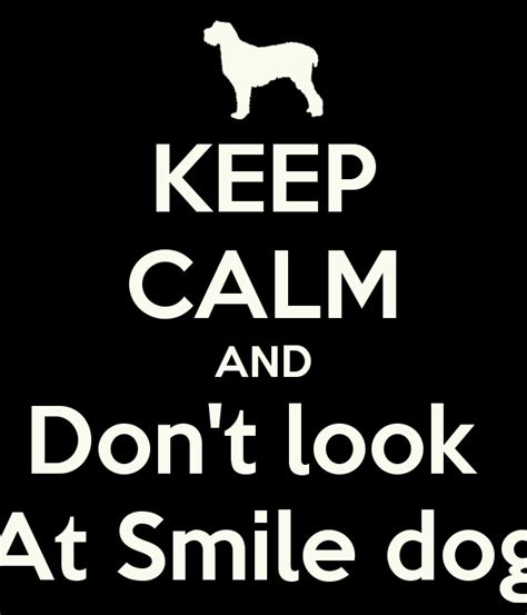 smile if you to stories of the origin and evolution of shambhala sun c books image keep calm and don t look at smile png