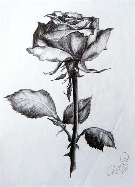 imagenes para dibujar a lapiz de rosas resultado de imagen para dibujos de rosas a lapiz