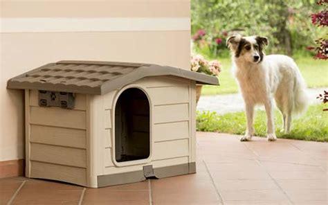 cucce da interno per cani cucce per cani le 10 top da interno e da esterno