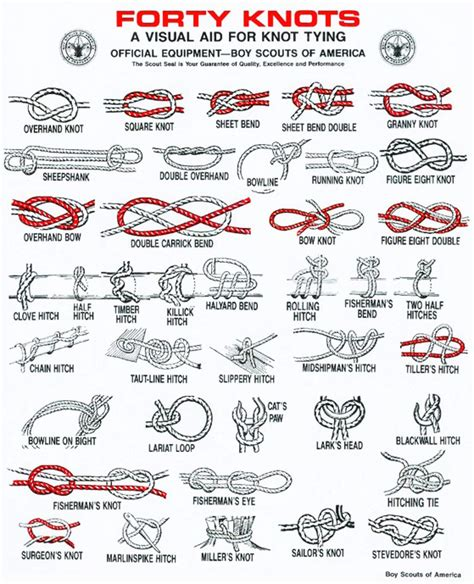 printable instructions knot tying forty knots meritbadgedotorg