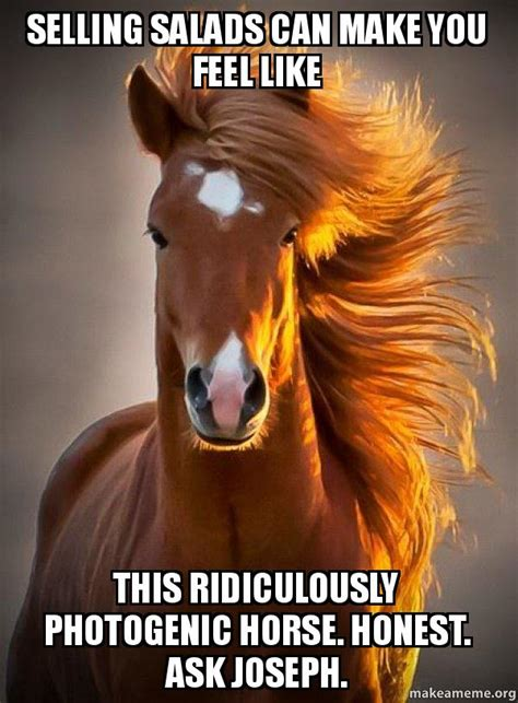 what can you make with pony selling salads can make you feel like this ridiculously