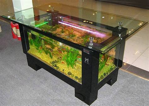 coffee table aquarium incredible coffee table aquariums