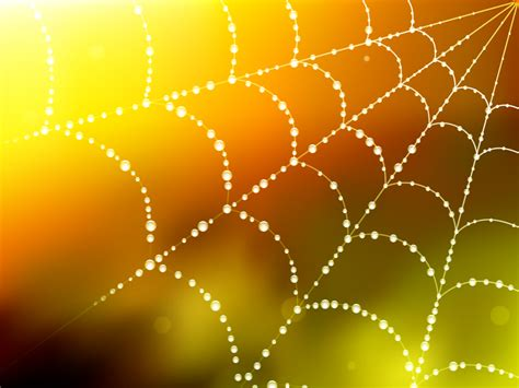 spider blur web ppt backgrounds beige brown technology