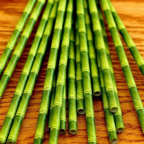 Paper From Bamboo - choose eco friendly straws the world
