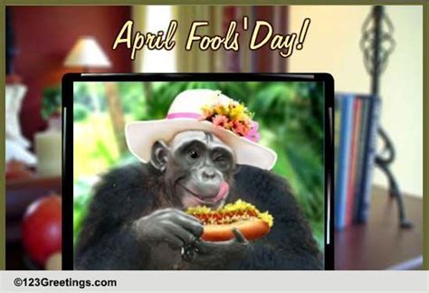 April Fool's Picture! Free Fun eCards, Greeting Cards