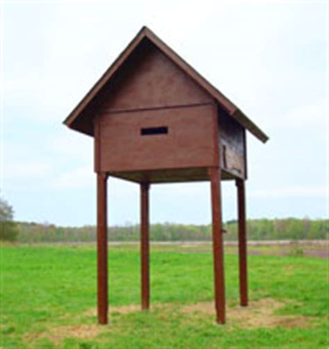 large bat house plans large bat house plans house design plans