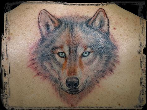 alpha wolf tattoo alpha wolf tattoos