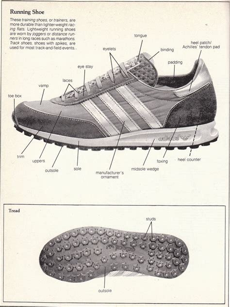 running shoe anatomy 26 best images about footwear anatomy on