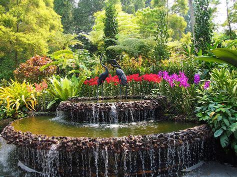 orchideen garten photo singapore fountains botanic gardens nature orchid shrubs