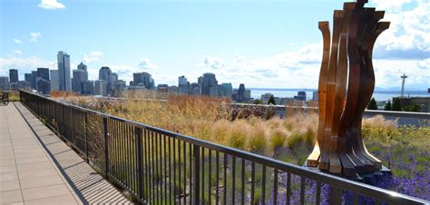 living roof seattle living building pilot update what why seattle