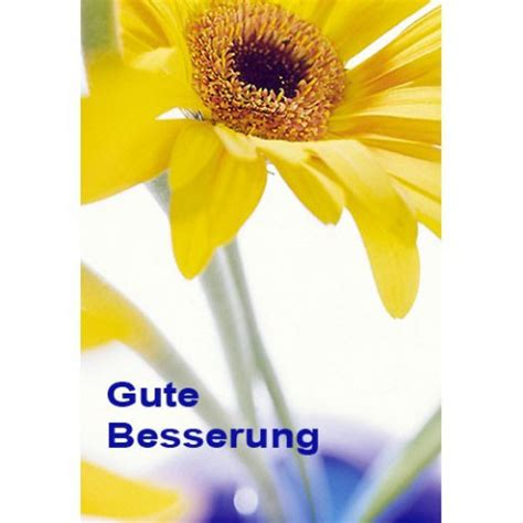 Blumen Sticker Zum Aufnähen by Gute Besserung Gru 223 Karte Genesung Krankenbesuch Motiv