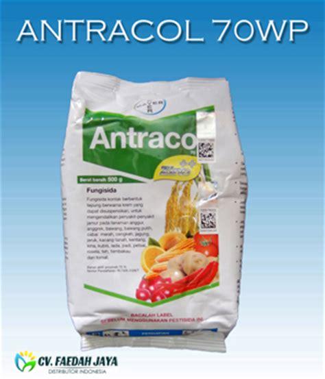 Fungisida Antracol 3 sekawan