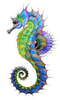 colorful seahorse 25 best ideas about seahorse drawing on