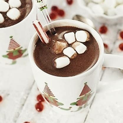 Chocolate Ption 1 In Winter by Rustic