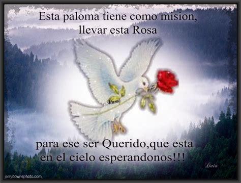 imagenes de luto con angeles imagenes de luto con frases bonitas archivos fotos de luto