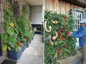 Cheap Vertical Garden Outdoor Cheap Vertical Garden Ideas Awesome Vertical