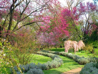 il giardino di ninfa il giardino di ninfa wall international