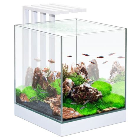 aquarium design zeneo éclat ciano aquariums et meubles aquariophilie animalis