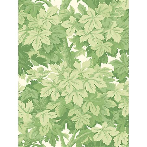 green vine wallpaper buy cole son great vine wallpaper john lewis