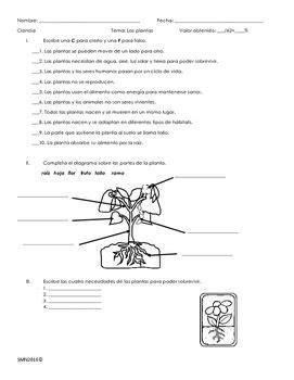 Examen sobre Las plantas | Education