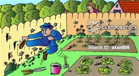 garten comic und karikaturen mit salat