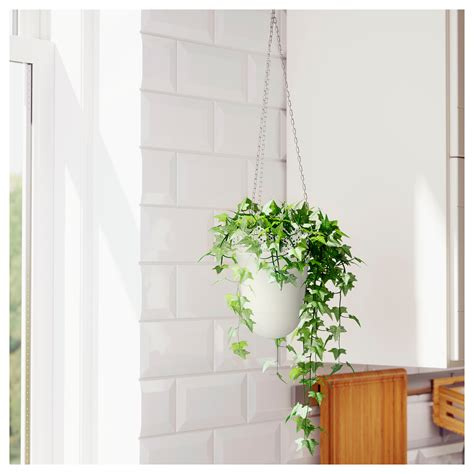 hanging planters skurar hanging planter in outdoor off white 12 cm ikea
