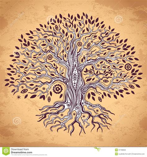 Vintage Tree Of Life Illustration Stock Vector Illustration Of Handmade Organic 37798656 Vintage Family Tree Royalty Free Stock Images Image 32018779
