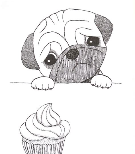simple pug drawing easy pug drawings sketch coloring page