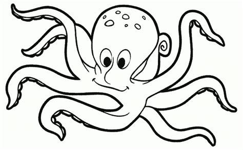 tutorial gambar hewan untuk anak mewarnai binatang laut gurita murid 17 gambar hewan