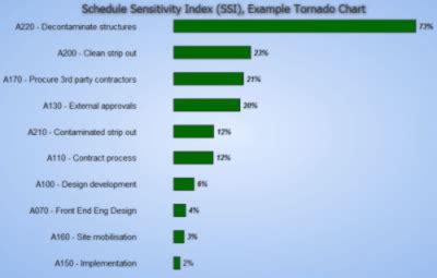 tornado diagram sensitivity analysis pmp choice image