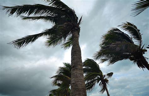 Florida Hurricane and Property Damage Claims   Ben Murphey