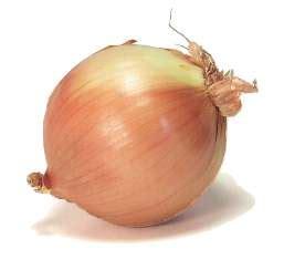 Shelf Of Onions by Onions How Do Onions Last Shelf Expiration Date