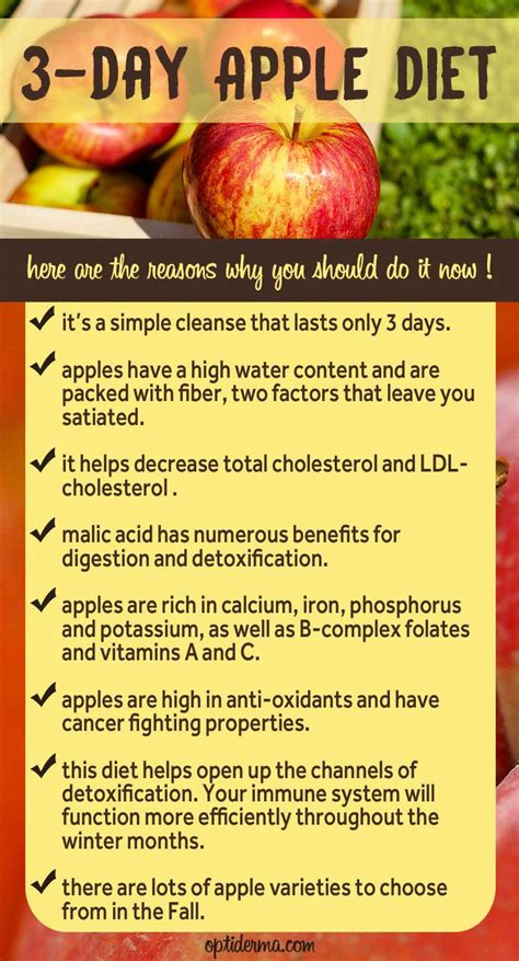 Apple Detox Cleanse Diet by 3 Day Apple Diet Get All The Benefits Of An Apple Cleanse