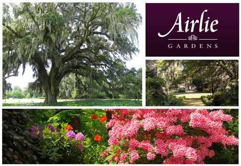Airlie Gardens Wilmington by Location Of Wilmington Access Of Wilmington Elsavadorla