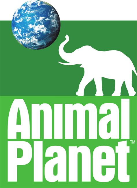 animal planter animal planet live channel loytv