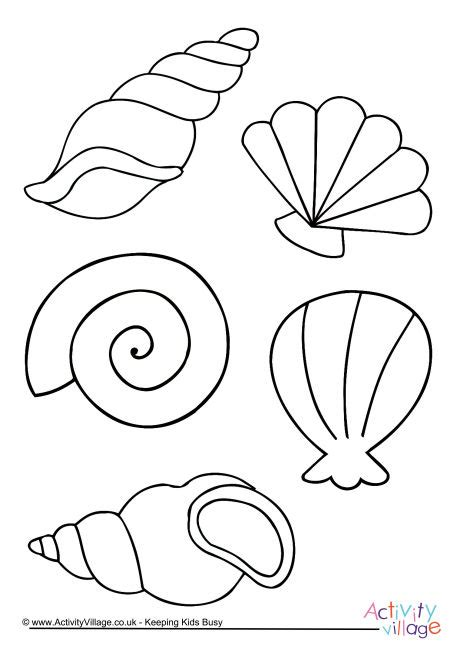 shell coloring pages shell colouring page