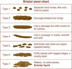 stool colors naturally loriel how i healed my fissure