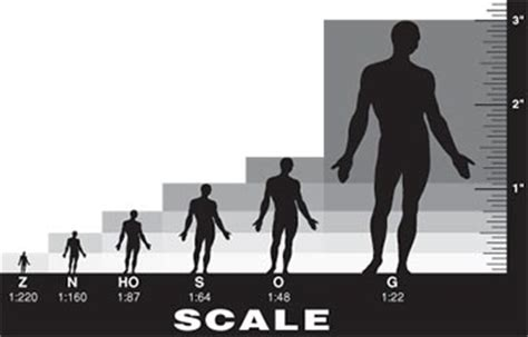 scale modeling: dimensions, conversion charts, f.a.q.s
