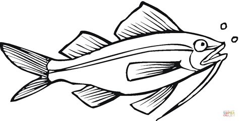catfish 10 coloring page free printable coloring pages