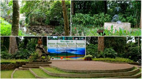 6 Picnic Spots In Laguna That You Must Not Miss This Up Los Banos Botanical Garden