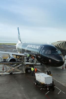 cargo air new zealand careers